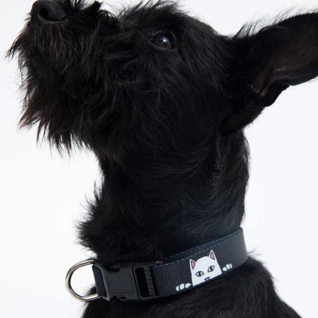リップンディップ RIPNDIP 首輪 ペットカラー PEEK A NERM WEB COLLAR 犬用首輪 猫用首輪 ペット用品