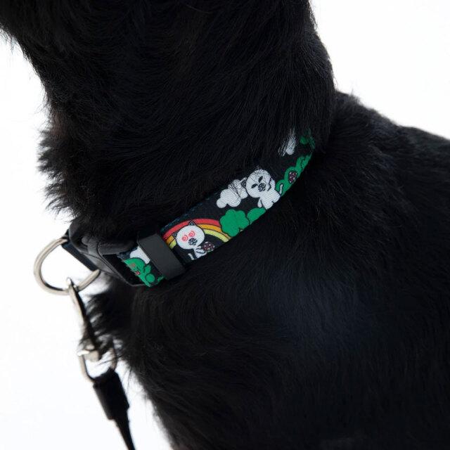 リップンディップ RIPNDIP 首輪 ペットカラー BUDY SYSTEM WEB COLLAR 犬用首輪 猫用首輪 ペット用品