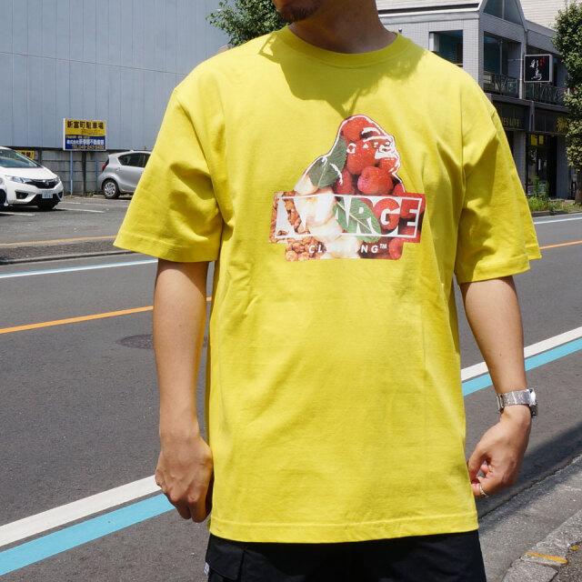 全2色 エクストララージ XLARGE Tシャツ GRUB SLANTED OG LOGO S/S Tee グリーン イエロー