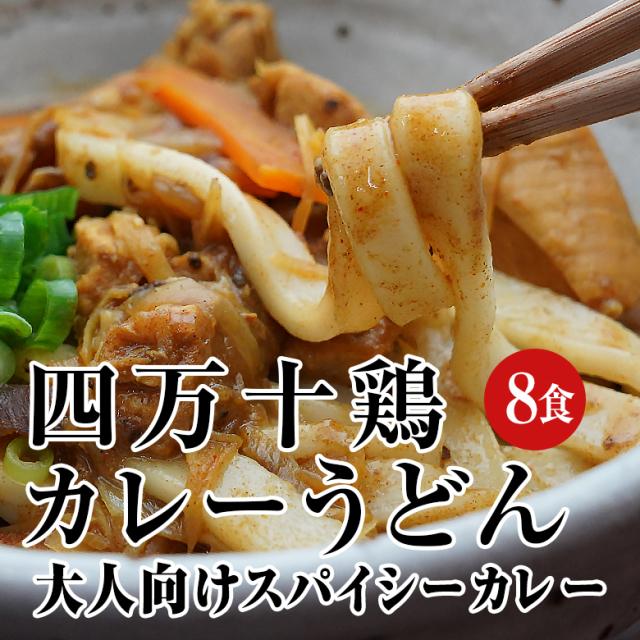四万十鶏カレーうどん 8食セット