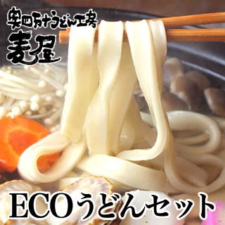 エコなうどんセット奥四万十の極太うどん 12食入り【冷凍うどん】
