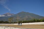 グァテマラ クシナレス農園パカマラ品種 シティロースト