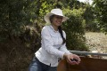 コスタリカ オルティス2000農地 フレンチ