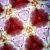 赤絵梅地紋/十二角型オイル