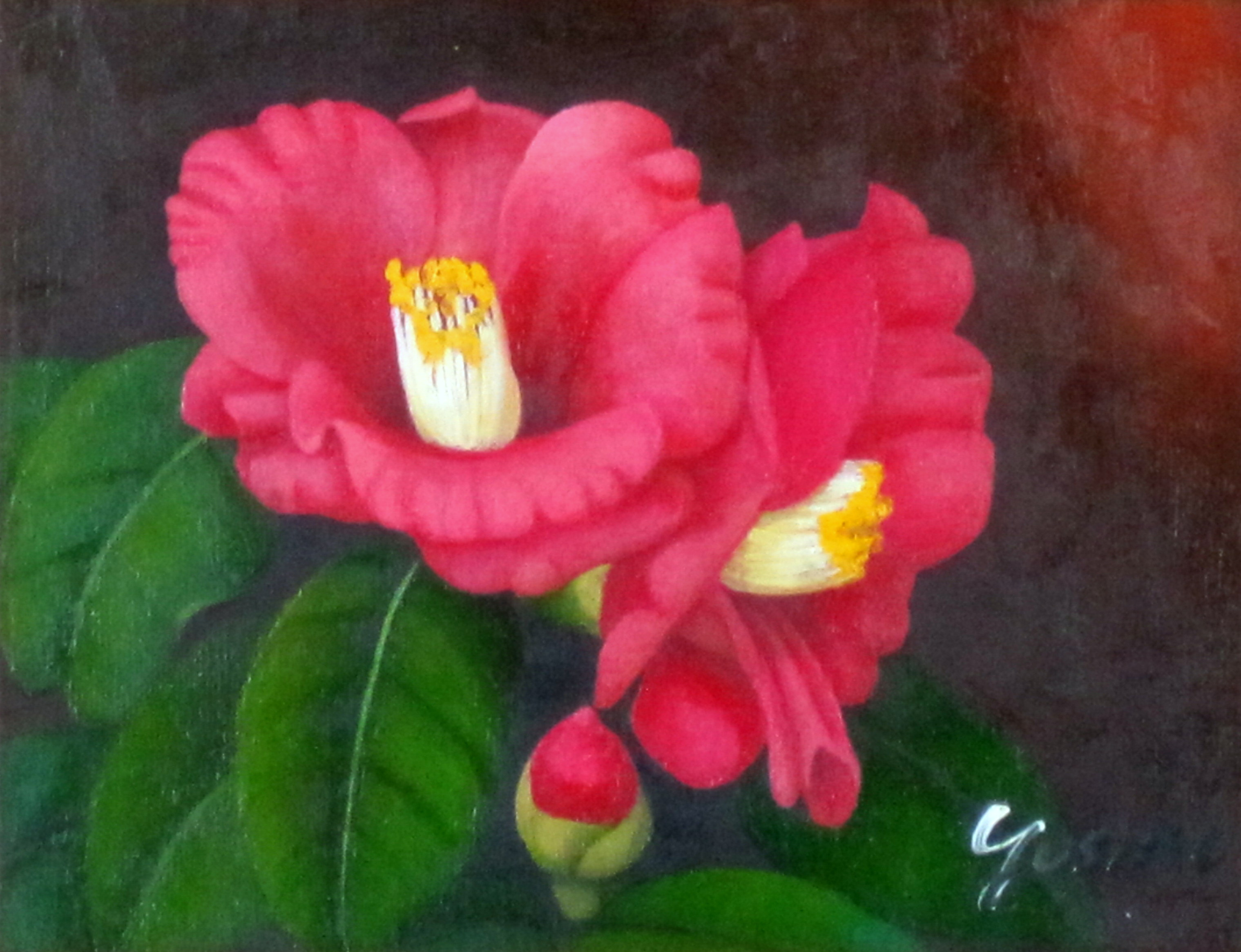 花の絵・志村好子  「椿」(赤色) 油彩 F0 外寸402×363mm