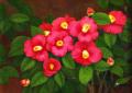 """椿の絵・志村好子「椿」(赤色)F4・油彩・額寸426×518mm""""真紅の椿"""""""