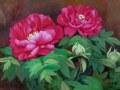 花の絵・志村好子  「牡丹」(赤) 油彩 F4 外寸395×483mm