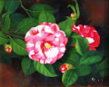 椿の絵・志村好子 「大乱」(赤・白椿)油彩・F3・額寸404×455mm