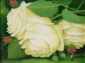 バラの絵・志村好子「薔薇」(白)・油彩・F0・額寸362×401mm