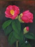 花の絵・志村好子  「椿」(赤色) 油彩 F0 外寸332×292mm