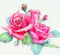 花の絵・志村好子 「薔薇」 水彩 F4 外寸 425×455mm