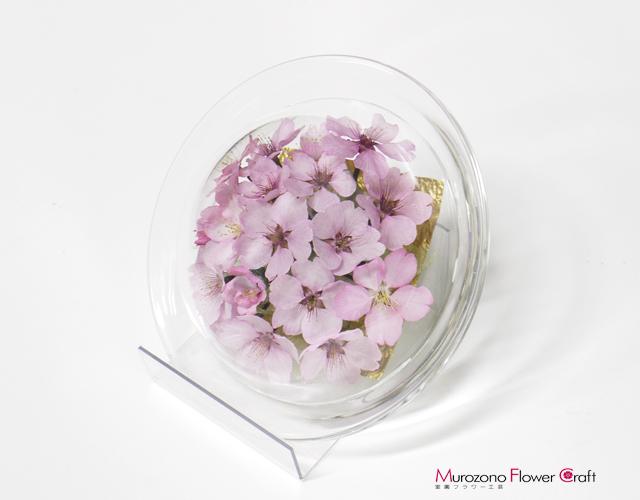 ボトルフラワー 桜 サクラ(河津桜)贈り物ギフト 皿タイプS Lスタンド付