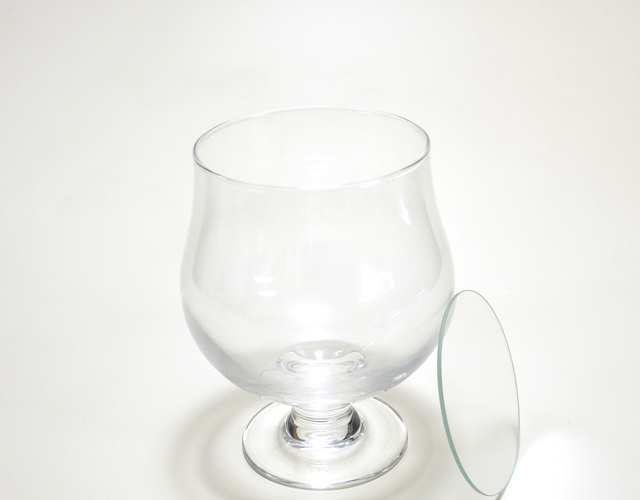 ボトルフラワー用ガラス容器 グラスS トムソン箱付き(C-02)