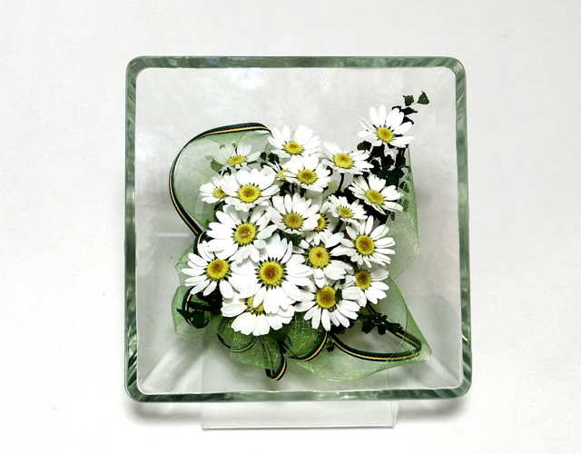 ボトルフラワー 白い花ノースポール スクウエアタイプM  お花のプレゼント お祝い 誕生日記念 贈り物ギフト