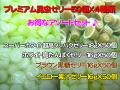 昆虫ゼリーアソートセット(クワガタ、カブトムシの成虫のエサ)の販売