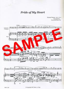 Pride of My Heart(R.Strauss) - お前、私の心のかわいい冠よ (R.シュトラウス)