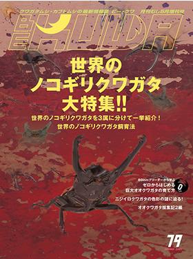BE-KUWA  No.79 世界のノコギリクワガタ大特集!!!