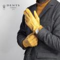 DENTS デンツ Clifton ペッカリー レザーグローブ 手袋 革手袋 本革 メンズ