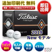 ゴルフボールオリジナル印刷 タイトリスト プロV1 2019モデル 1ダース(12球入り) 送料無料【文字印刷】
