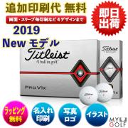 ゴルフボールオリジナル印刷 タイトリスト プロV1X 2019モデル 1ダース(12球入り) 送料無料【文字印刷】