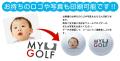 【ゴルフボール 名入れ 通販 イラスト 印刷 贈り物 ギフト プレゼント 当日出荷 ボール】その他手数料