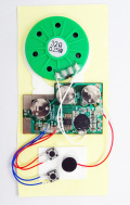 MK-168-100 超薄型高音質15秒ボイスレコーダーボード100台セット品(マイク、スピーカー、電池付き。)