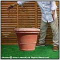ベーシックデザイン ベノッチ 高品質 テラコッタ鉢 高級 プランター リムポット 上質感 輸入テラコッタ植木鉢