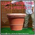 テラコッタ植木鉢 ベーシックデザイン ベノッチ 高品質 テラコッタ鉢 高級 プランター リムポット 上質感 輸入