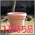 デローマ社  リムポット42  トスカーナ テラコッタ鉢  大型輸入植木鉢   素焼き陶器鉢