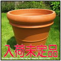 トスカーナ  大型輸入植木鉢 デローマ社  素焼き陶器鉢   リムポット52 テラコッタ鉢