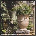 アンドゥーズアンティコ 格調 テラコッタ 花鉢 アンティーク調 一対 大型 高級 輸入鉢 カップ型