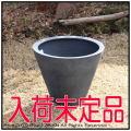 エッシュバッハ社 グラスファイバー植木鉢 グリーンポット シンプルコーン  プレーン モダン リードライト