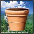 ドッピオボルド ユーロスリー ポリエステル樹脂鉢