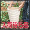横筋ポット鉢 ショコラ 陶器 ハンドメイド鉢 輸入テラコッタ鉢 経年変化