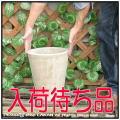 コニックポット鉢 テラコッタ ショコラ 高級輸入鉢 プレーンデザイン  人気 丸筒型