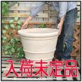 ベトナム ハンドメイド 陶器 ヘビーリムポット鉢 ショコラ 高級輸入鉢 ベストセラー 丸型