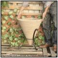 ショコラコーン 横筋花鉢 とんがり帽子型 テラコッタ鉢 アイアン脚付 ハンドメイド