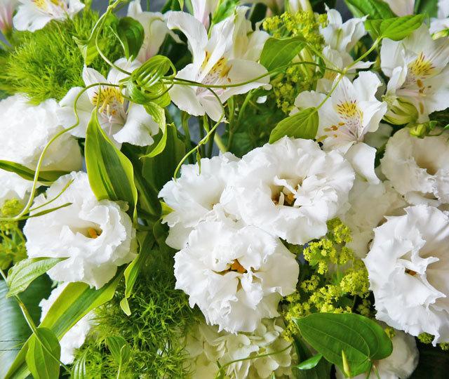 清純なホワイトアレンジメント《白・グリーン系》