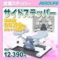 エアロライフ サイドステッパー DR-3865  【送料無料】 【代引不可】