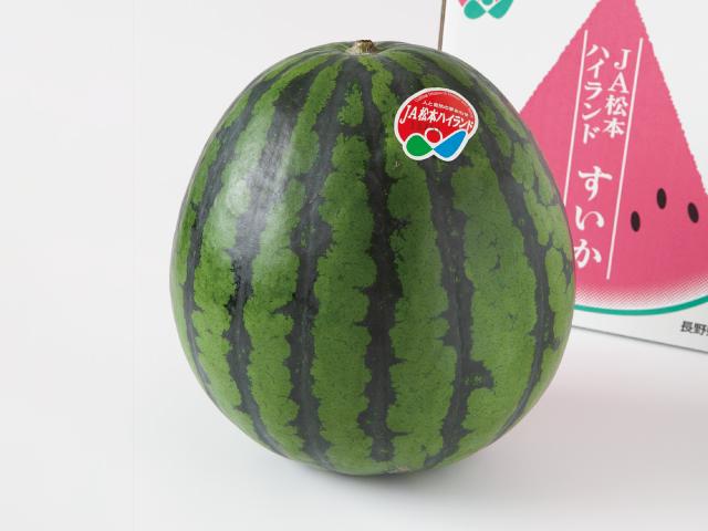 松本ハイランド すいか