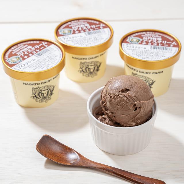 長門牧場アイスクリーム120ml(チョコレート)