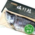 塩引鮭半身姿造り5kg前半の半身