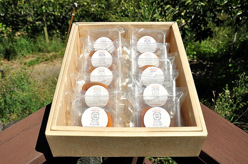 お歳暮用 柿本来の美味しさを凝縮した西吉野産柿のあんぽ柿10ヶ入