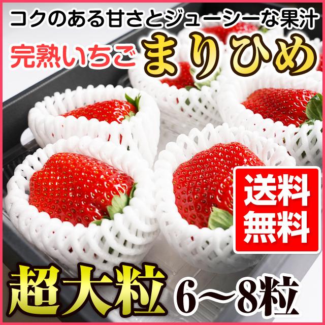 完熟イチゴ まりひめ 超大粒