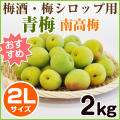 青梅(南高梅)2L