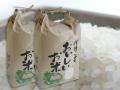 和歌山県産 自家製キヌヒカリ 10kg