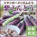 紫えんどう(ツタンカーメンえんどう)