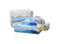 販促用 贈答用 箱ティッシュ 日本の四季 冬 エコ寸ティッシュ150W 3箱パックX20個