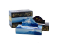 販促用 贈答用 箱ティッシュ 日本の四季 夏 エコ寸ティッシュ150W 3箱パックX20個