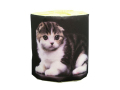 販促用トイレットペーパー 仔猫 スコティッシュ 個包装100個 ダブル30m